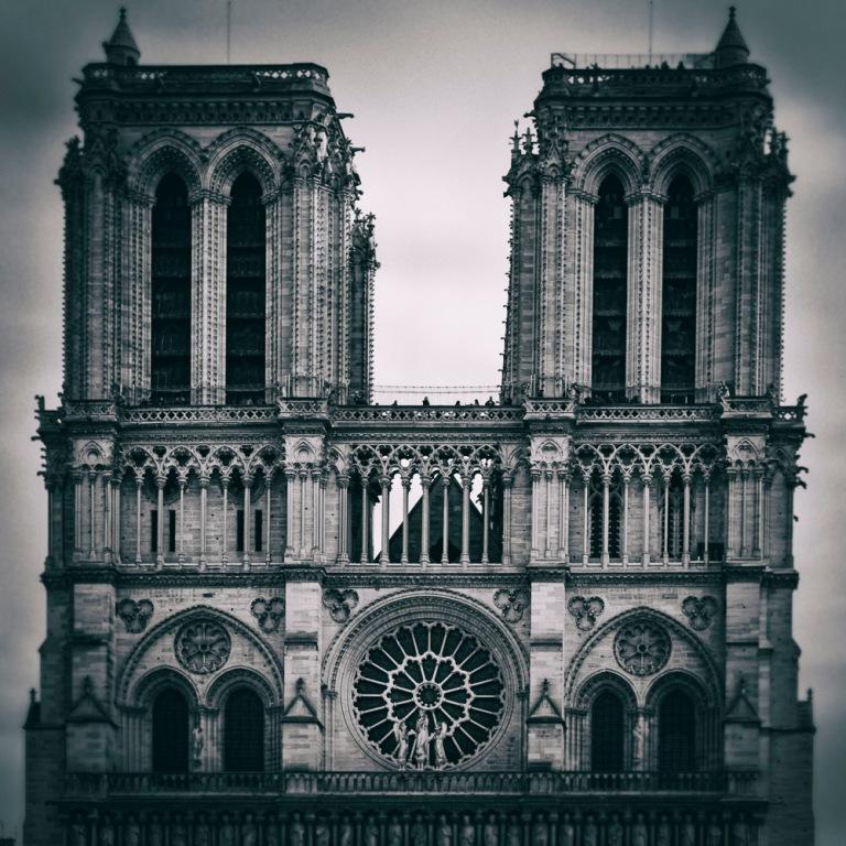 Notre Dame | Study - Paris, France 2015